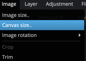 """Image of the Image dropdown on Canva. """"Canvas size.."""" is highlighted."""